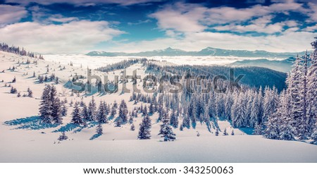 Sunny winter morning in the Carpathian mountains with fresh snow glowing sunlight. Instagram toning. - stock photo