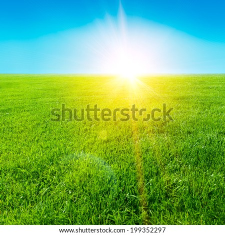 Sunrise among a green fields - stock photo