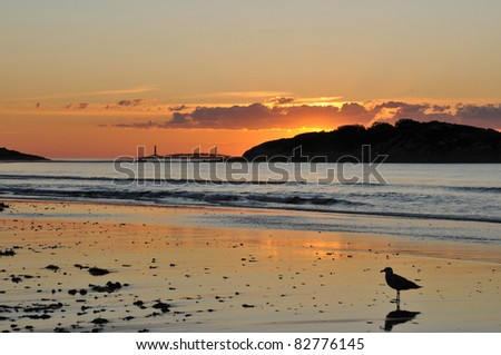 Sunrise at Gloucester's Good Harbor Beach with the twin lights at Thacher's Island in the background - stock photo