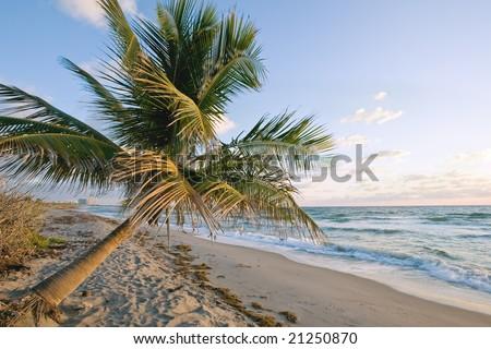 sunrise at john lloyd state park beach near fort lauderdale florida - stock photo