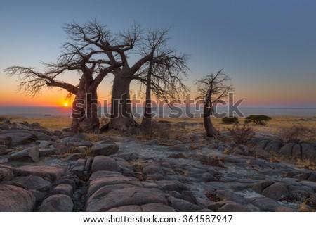 Sunrise at Kubu Island - stock photo