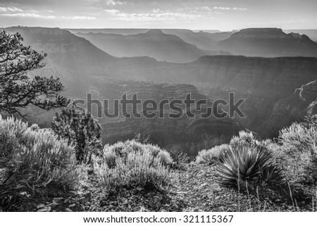 Sunrise at Point Sublime, Grand Canyon National Park, AZ - stock photo