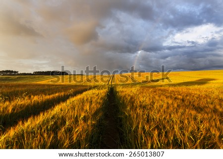 Sunrise field with rainbow and road in north Poland/ Sunrise field light - stock photo