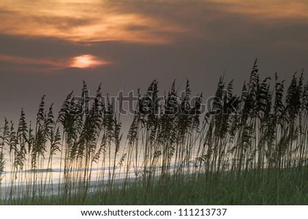 Sunrise, Huntington Beach State Park, South Carolina, USA - stock photo