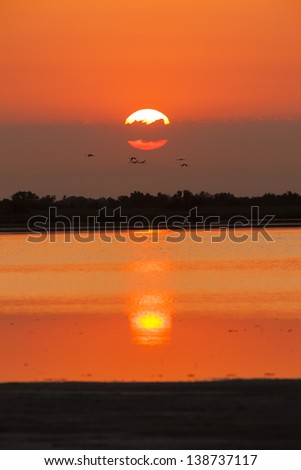 sunrise in Camargue, Provence, France - stock photo