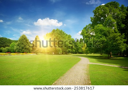 Sunrise in the beautiful park - stock photo
