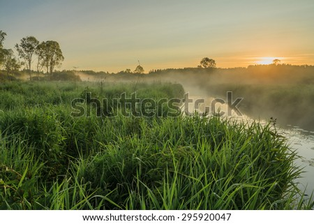 Sunrise in the field at the river with fog. Dawn at the river. Web in dew in the morning. Bright fine sunrise on the river. The rays of dawn sunlight illuminate the clearing with wildflowers and grass - stock photo