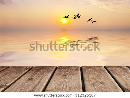 sunrise in the lake - stock photo