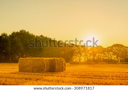 Sunrise landscape with straw bales in the morning - stock photo