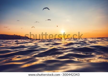 Sunrise light shining on ocean wave - stock photo