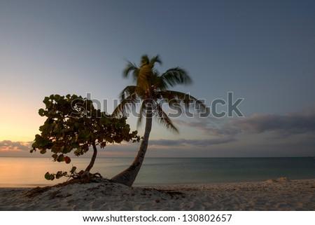 Sunrise on a Marathon Island, Florida Keys, USA. - stock photo