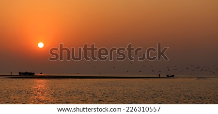 Sunrise on seashore with flying birds at Kuakata, Bangladesh - stock photo