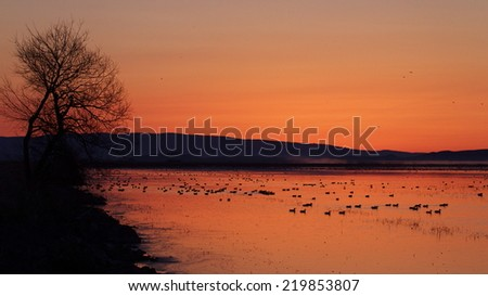 Sunrise over a duck and goose filled wetland in northern California, in the Klamath Basin National Wildlife Refuge, along the Oregon state border.   Duck and goose hunting in the Pacific Flyway - stock photo