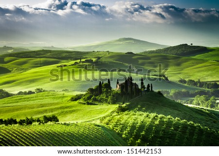 Sunrise over farm of olive groves and vineyards in  Tuscany - stock photo
