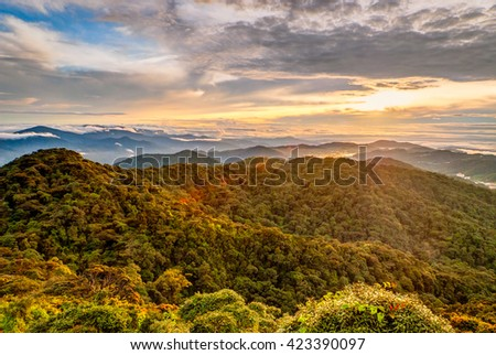 Sunrise over Gunung Brinchang misty jungle in Cameron highlands, Malaysia - stock photo