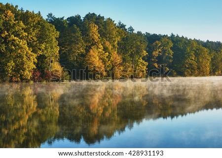 Sunrise over lake. Forest trees on the lake illuminated by sunlight. - stock photo