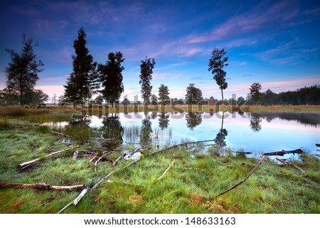 sunrise over little wild lake, Drents-Friese wold, Netherlands - stock photo