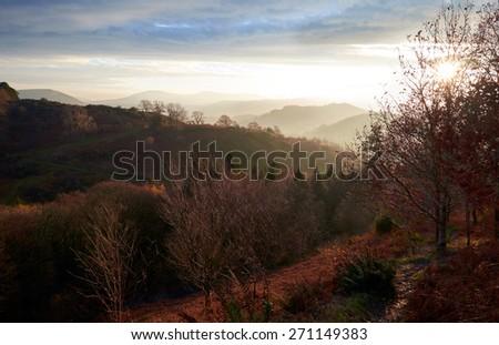 Sunrise over woodland surrounding Braithwaite in the Lake District, Cumbria, England. UK. - stock photo