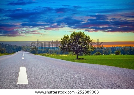 Sunrise time on the road in meadow - stock photo