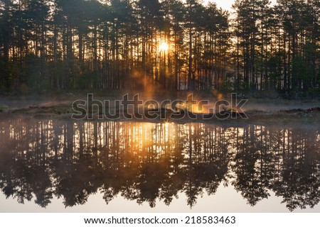 Sunrise with sunbeams through the forest by the lake - stock photo