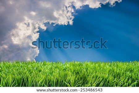 Suns rays beaming on lawn behind clouds - stock photo