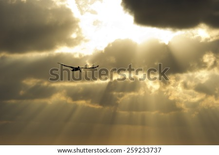 Suns rays break through the clouds as a single soul soars by. - stock photo