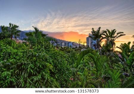Sunset above jungles, Tenerife, Canarian Islands - stock photo
