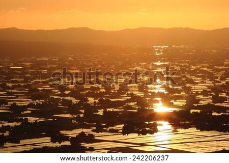 Sunset at flooded rice field, Sankyoson, Toyama, Japan  - stock photo