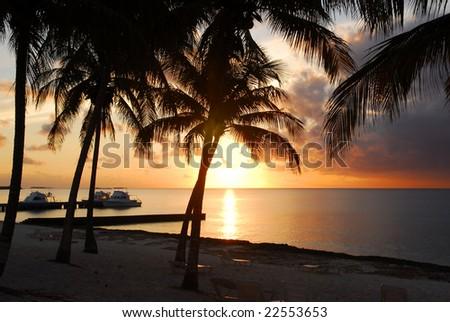 Sunset at Maria la Gorda beach in Cuba with palmtree silhouettes - stock photo
