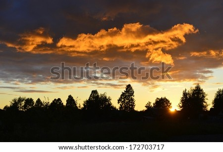 Sunset behind a trees.  - stock photo