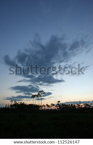 sunset clouds over forest - stock photo