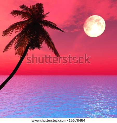 Sunset coconut palm tree on ocean coast - digital artwork. - stock photo