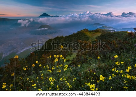 Sunset in a valley with active volcanoes. Java island, Indonesia - stock photo