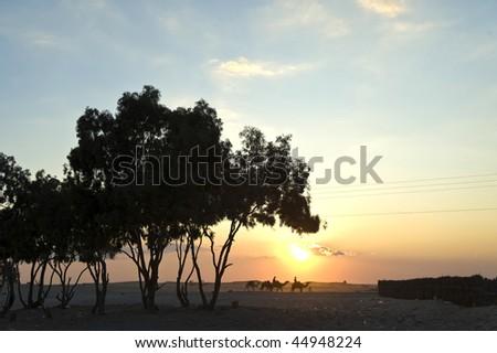 Sunset in Sahara Desert, Tunisia - stock photo