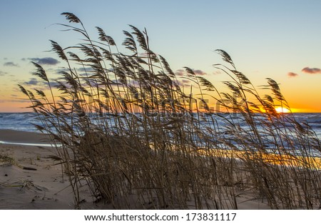 Sunset in the bay. Seascape.  - stock photo