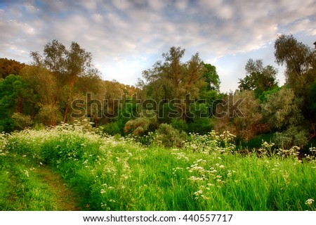 sunset in the bright spring forest with a footpath in the foreground. HDR - stock photo