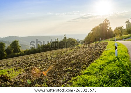 sunset in the field - stock photo