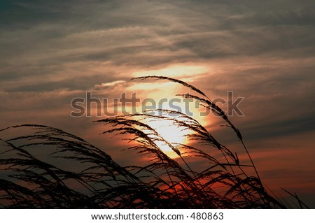 Sunset in the Outer Banks of NC - stock photo