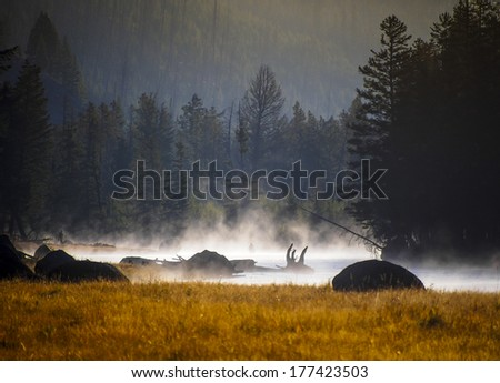 Sunset in Yellowstone National Park, Wyoming, USA - stock photo
