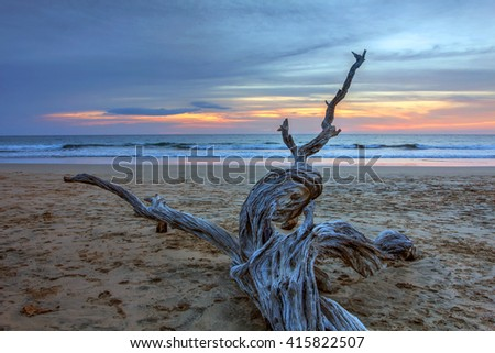 Sunset landscape with dry wood on the sandy surfing beach of Playa Avallena in Guanacaste region of Costa Rica. - stock photo