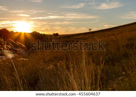 Sunset, National Park Kornati in Croatia at Adriatic sea, Mediterranean, Europe - stock photo