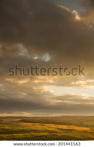 Sunset on a field in the countryside  - stock photo