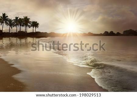 Sunset on a south-sea beach - stock photo