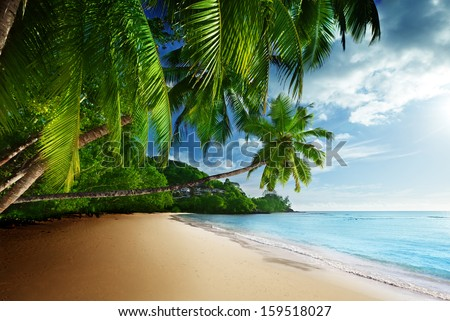 sunset on beach Anse Takamaka of Mahe island, seychelles  - stock photo