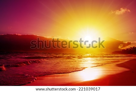 Sunset on the beach of caribbean sea. - stock photo