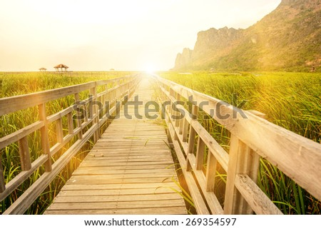 Sunset on the marsh boardwalks. - stock photo