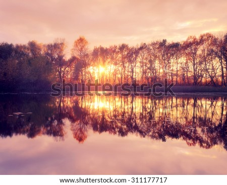 Sunset on the river. Sunlight between the trees with reflection in calm water - stock photo