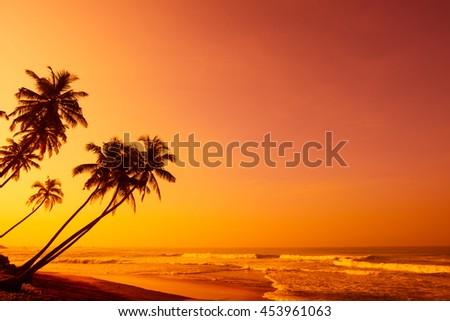 Sunset on tropical beach - stock photo