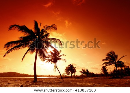 Sunset on tropical beach with palm trees - stock photo
