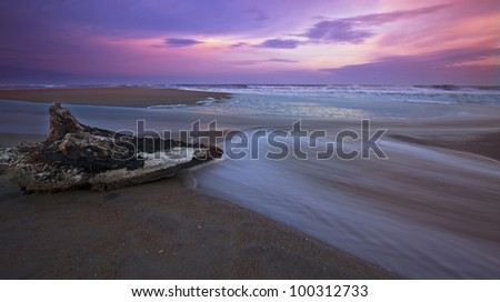 Sunset over sandy beach on the Atlantic shore and drift wood - stock photo